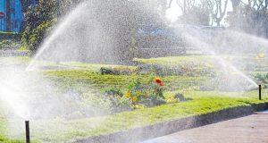 Nos conseils pour bien entretenir sa pelouse