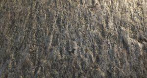 Qu'est-ce que la feuille de pierre ?